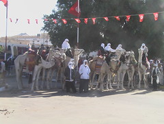 Camel Riders at Douz Sahara Festival