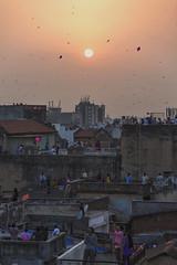 Uttrayan Kite Festival (Ravikanth K) Tags: travel people india kite festival fly flying documentary custom ahmedabad sankranthi sankranti manja gujrat makara patang uttrayan 500px khadia