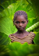 Girl in Taro Field (Rod Waddington) Tags: africa african afrika afrique ethiopia ethiopian ethnic etiopia ethnicity ethiopie etiopian thiopien wollaita wolayta tribe traditional tribal culture cultural child girl female taro field village farming farm green leaves