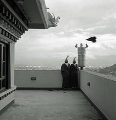 - Yuriy Sanin.     - Kathmandu Nepal Monastery 300 dpi 20x20 Jpeg (Yuriy Sanin) Tags:       mamiya6 66  kathmandu nepal 2013 yuriy sanin medium format bird monks