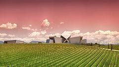 Viedos y Bodegas Sommos (kinojam) Tags: building field architecture canon arquitectura kino barbastro wine edificio bodega campo bodegas vino viedos canon6d sommos kinojam