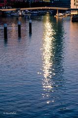 AbendGlitzer (tina djebel) Tags: main westhafen port ports hafen stadt city frankfurt fluss river rivers abenddmmerung