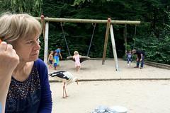 chill (domit) Tags: zoo planckendael mechelen belgium oma