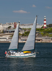 Solo 30th June 2016 #2 (JDurston2009) Tags: plymouthsound devon mountbattan plymouth sailing sailingboat yacht