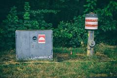 Feuer - Hydrant (Christian P. - Steher82) Tags: feuer hydrant feuerhydrant retro unplugged fire water wasser green rescue wald