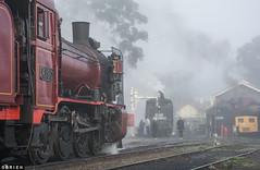 Waiting (Dobpics O'Brien) Tags: steam steamrail srv special victorian victoria vr rail railway railways k153 k190 j549 maldon castlemaine vgr engine locomotive train