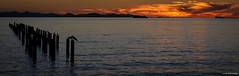 Sunset in Point Roberts, Washington ( Peteron Phtography) Tags: pointroberts washington washingtonstate stateofwashington lighthousepark beaches sandybeach driftwood ocean sea oceanside waterfront homes cottages parks sunsets water kiniskisreeftavern waves landscape seascapes boating visitors residence