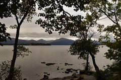 Inversnaid to Balmaha trip (Anne Young2014) Tags: lochlomond scotland evening balmaha
