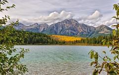 A Slice of Autumn (Philip Kuntz) Tags: aspen autumn fall fallfoliage pyramidpeak patricialake stormy jasper alberta canada