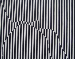 Op Art (monojussi) Tags: newyork newyorkcity moma museumofmodernart