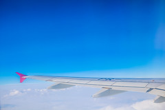 Asa (Andreza Menezes) Tags: curitiba paran friend amor verde cores colorido memorialucraniano bosquepapa brazil brasil trip viagem jardimbotanico ceu sky janela window nuvens clouds pessoa people jardim garden madeira wood sun sol