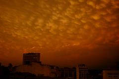 ASCF2483 (Lucas Falco) Tags: apocalypse porto alegre orange sky