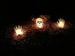Spooky Hands - POTD #142 (sdobie) Tags: 2016 bones decorations halloween hands potd skeletons skulls