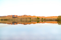 Mirror (mclcbooks) Tags: landscape seascape highkey lake water reflections lakechatfield colorado autumn fall trees hills