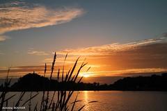 Le ciel se dgage de plus en plus en soire (antoinebouyer) Tags: crpuscule lac temps mto ciel cloud nuage sky