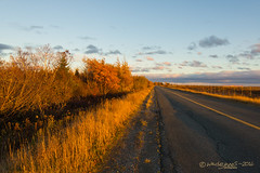 CYQX- CIRCULAR ROAD (Wade.J.) Tags: airport cyqx gander newfoundland sunset sunny road autumn color fall street international wadejanes