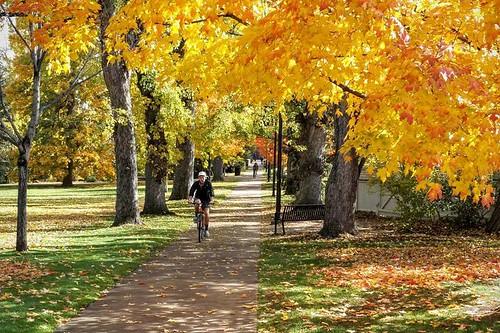 Photo - Samuel Forsyth- CU Boulder