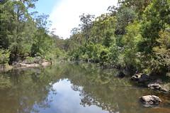 160 reflections, Glenbrook, Blue Mountains National Park NSW (johnjennings995) Tags: bluemountains nsw newsouthwales glenbrook