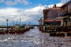 molivos harbour (cameoblue) Tags: blue sea sky house port boat greece lesvos molivos