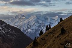 Alte Cime (Andrea Moraschetti Photography) Tags: autumn sky italy cloud mountain snow tree nature canon italia view ngc natur natura summit brescia lombardia adamello pontedilegno pnstelvio eos600d