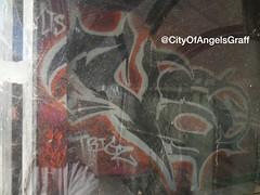 Versuz LTS KOG #versuz #vs269 #269 #lts #kog #lasttosurvive #killerofgiants #graffiti #losangeles #losangelesgraffiti #cityofangels #cityofangelsgraff (cityofangelsgraff) Tags: graffiti losangeles lts cityofangels kog 269 versuz losangelesgraffiti vs269 killerofgiants lasttosurvive cityofangelsgraff