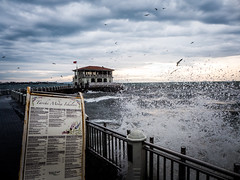 Strong weather at Kadikoy pier (bafhaus) Tags: sea weather turkey restaurant pier moda istanbul kadikoy tarihi iskelesi