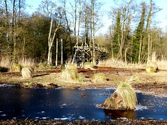 New Hide going up Jan 20th (ericy202) Tags: new nature construction hawk norfolk reserve hide owl trust elevated moor sculthorpe