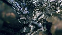 Glacier (-ASD-) Tags: camera wood city sunset red england color colour macro green water overgrown colors grass canon vintage grey woods rust colours wildlife rustic grain glacier explore watercolour canon5d winchester vignette