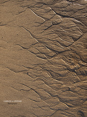 Tiny Fractal Landscapes (cctrilla) Tags: espaa music abstract texture textura beach water lines landscape spain sand agua europa europe poem natural playa paisaje olympus arena tiny musica tenerife fractal poesia abstracto fractales canaryislands lineas islascanarias diminuto benijo cctrilla e520 juliodelarosa laislaminima