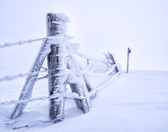 Frosty fence (andy bryant) Tags: snow france nature snowshoe frost signpost fencepost rhônealpes susville