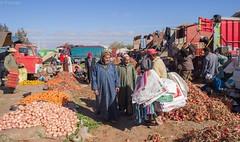 Cebollas (pdorta) Tags: verduras vegetables market onions mercado morocco maroc marruecos ourika