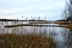 Swimming place at the SE corner of Lake Sylvöjärvi, Nastola, 20111113 (RainoL) Tags: november autumn lake eh finland geotagged jetty shore fin 2011 nastola päijäthäme 201111 20111113 geo:lat=6095238100 geo:lon=2602778100 sylvöjärvi