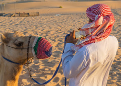 Camel Herder Taking Picture of his Camel (stevebfotos) Tags: desert uae camel abudhabi2015