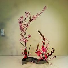 Jenny's ikebana
