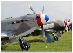 YAK unlimited (Aerofossile2012) Tags: yak aircraft aviation airshow warbird avion cerny 2013 ferté normandieniemen