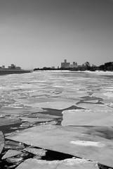 city view (buckshot.jones) Tags: winter ontario canada skyscraper marriott gm michigan detroit windsor detroitriver renaissancecenter generalmotors ambassadorbridge gmbuilding
