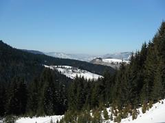 Zlatar mountain (jecadim) Tags: winter mountain snow nature forest serbia srbija novavaros
