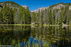 Dream Lake RMNP (Scott Sitler) Tags: sky mountains water colorado dream hike mountainlake rockymountainnationalpark lillypads dreamlake