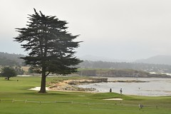 Pebble Beach 18th Hole (rodliam) Tags: 17miledrive monterey montereygolf pebblebeach montereycounty