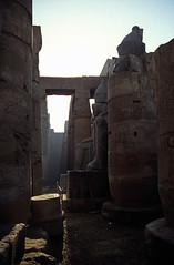 gypten 1999 (242) Tempel von Luxor: Kolossalstatue Ramses II. (Rdiger Stehn) Tags: afrika gypten egypt nordafrika 1999 winter urlaub dia analogfilm scan slide 1990er 1990s obergypten sdgypten aad diapositivfilm analog kbfilm kleinbild canoscan8800f canoneos500n 35mm luxor misr  tempelanlage historischesbauwerk altgypten archologie archologischefundsttte altertum antike tempelvonluxor luxortempel tempel sakralbau bauwerk sulen unescowelterbe welterbe unescoweltkulturerbe weltkulturerbe gyptologie statue sulenkolonnade