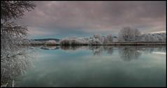 Hoar Frost (anakiwa_forever) Tags: twizel mackenziecountry kellandpond hoarfrost frost newzealand southisland 522016 522016week26 116photochallenge