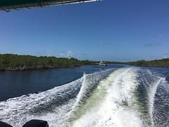 Headed Back (MyFWCmedia) Tags: boat mangrove fwc myfwc myfwccom wildlife florida floridafishandwildlife conservation johnpennekamp keylargo flkeys floridakeys floridastateparks johnpennekampcoralreefstatepark park pennekamp lovefl