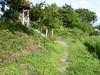 Part of the old walking route (Stop carbon pollution) Tags: flickr japan 日本 honshuu 本州 saitamaken 埼玉県 chichibu 秩父 34kannonpilgrimage 三十四札所 kantou 関東