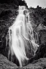 DSC_8029-2 (nigelsnell) Tags: bw freddie powerscourt ononesoftware photo10 water waterfall