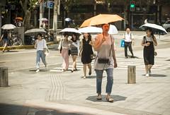 lifeinthehigh30s 4 (matteroffact) Tags: shanghai china asia heat heatwave celcius fahrenheit hot temperature summer umbrella hell hades street puxi jing an jingan district humid nikon d800 d800e andrew rochfort andrewrochfort matteroffact shade sweat