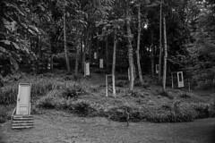 ... pues estas son las puertas a travs de las que  ellas  se manifiestan ... (Lanpernas 2.0) Tags: cortejosdehadas bosqueencantado bosque mitos leyendas hadas puertas rboleda ninfas arte teatro viajealbosquedelasninfas sueodeunanochedeverano gladysenea