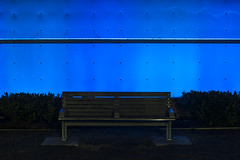 Downtown park at night with bright blue wall and park bench (Jim Corwin's PhotoStream) Tags: seattledowntown absence alone architecture bench benches bluewall boldcolors brightblue building buildingexterior chairs city citylife citypark citystreet different downtown downtowndistrict downtownpark eerie evening horizontal illuminated loneliness lonely morninglight mysterious neonlights nighttime nobody outdoors park parkbenches pavement photography streetlight streetscene travel unusual urbanscene