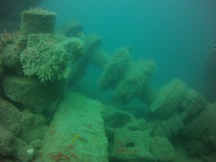 19 July 2016 - Scillies Trip PICT0228 (severnsidesubaqua) Tags: scillies scilly scuba diving