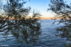 Capvespre S'Agar (rossendgricasas) Tags: sea sunset beach mar catalonia atardecer capvespre costabrava girona sagar