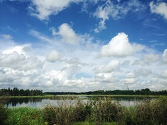 Parkland Landscape (Bhlubarber) Tags: mobile iphone bc canada alberta carvel